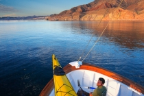 Ursa Major, near Isla Carmen, Sea of Cortez, Baja, Mexico.