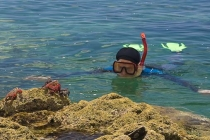 Geoff in face-off with Sally Lightfoot Crabs.
