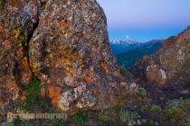Full moon and lichen on rock at sunset on Blue Mt., Deer Park, Olympic National Park, WA.