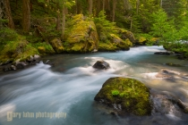 Dungeness River, Buckhorn WIlderness, Olympic National Forest.