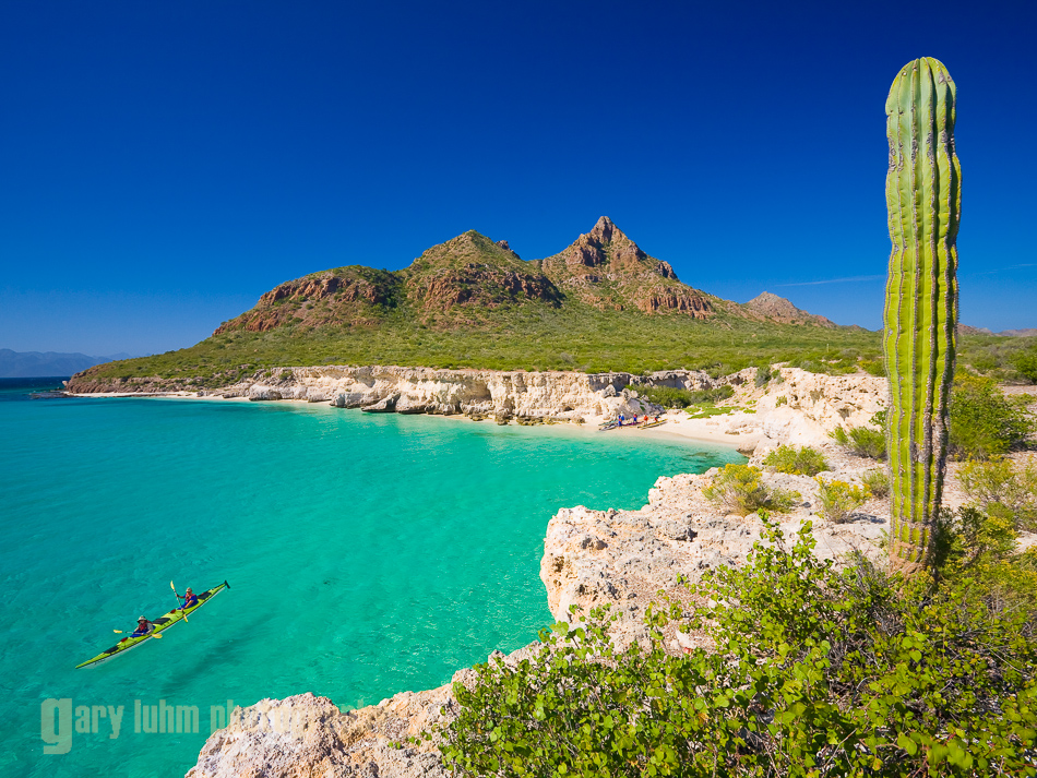 Sea Kayakers, white sand beach and Cardon Cactus of Isla Carmen. Sea of Cortez, Baja, Mexico (MR).