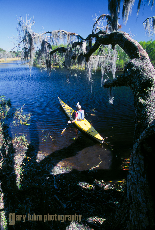 Kayaking on the Myakka River, Myakka River State Park, FL
