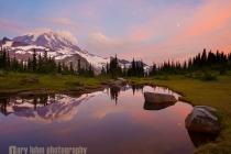 Reflection in Spray Park tarn, Mt. Rainier National Park.