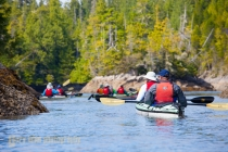 Sea kayakers in double kayaks explore intertidal. British Columbia, Vancouver Island, Canada. (MR).