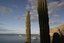 Ursa Major in Agua Verde. Cardon cactus frame the yacht.
