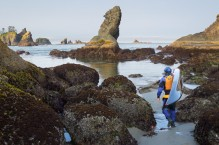 Man carrying sea kayak to intertidal launch spot. Point of Arches, Olympic National Park