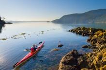Sea kayaker on calm sea, Cypress Island, San Jaun Islands, Washington State. (MR).