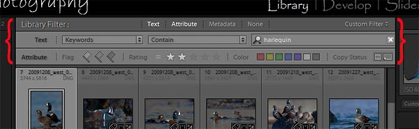 "Lightroom filter bar, shown here with text and attribute criteria selected. Text search is set to harlequin by ""keyword"". Attribute rating rule is set to = two stars. Metadata criteria not used."