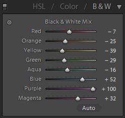 Example 2b. Black & White panel. Cool tones