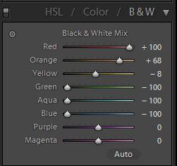 Example 3. Black & White panel. Cool tones
