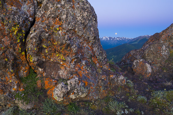 Image 2. Large-in-frame, lichen-covered rock foreground element takes up so much space it becomes the subject. The distant mountains provide context. Canon 5D, 24mm f/3.5 TS-E @f/13, iso 100, 3.2sec.