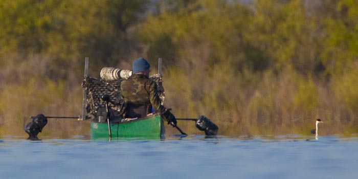 Slick-looking bird photography canoe set-up; the electric trolling motor could be quite useful. But does it get results?