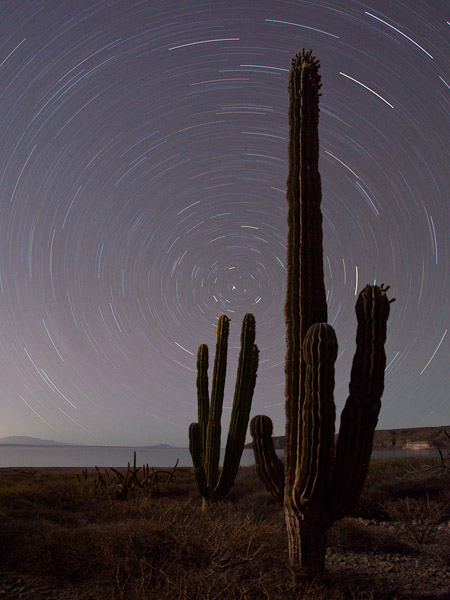 A four-day old moon casts some light on this Cardon Cactus star trail. I've shot this before, but this one beats everything. I was pleased to get the Sea of Cortez in the photo as well. Canon 5D II, 17-40mm f/4L @17mm, ISO 200, f/5.6, 1 hour.