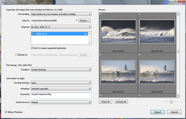 Lightroom library Import dialogue box