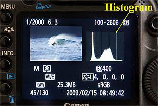 Camera back showing histogram plus other image information.