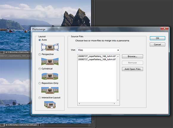 Fig. 2. In the dialog box leave the Layout in Auto, choose the images, click OK