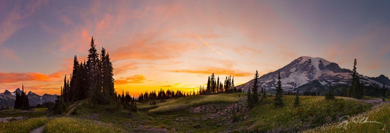 Mazama Ridge, Mt. Rainier NP, Washington State. Pan from 10 vertical images. Canon 5DIII, 17-40mm f/4L @40mm. .25s, f/11, ISO100.