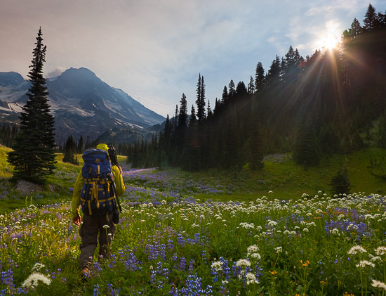 Backpacker at Indian Henry's Hunting Ground, Mt. Rainier NP